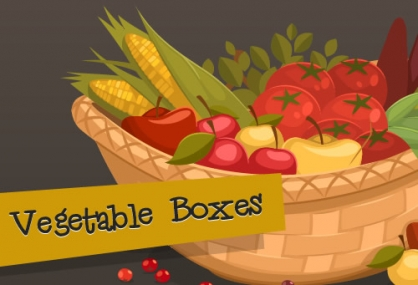 Vegetable Boxes